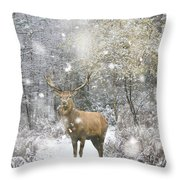 Beautiful Red Deer Stag In Snow Covered Festive Season Winter Fo Throw Pillow