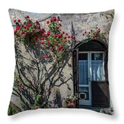 Entrance Throw Pillow