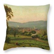 The Lackawanna Valley Throw Pillow