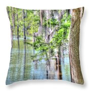 A Beautiful Day In The Bayou Throw Pillow