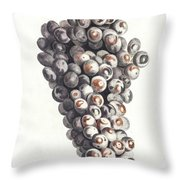A Bunch Of Grapes By Johan Teyler  1648-1709  Throw Pillow