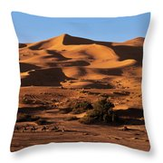 A Caravan In The Desert Throw Pillow
