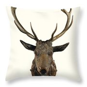 A Carved Wooden Red Deer Trophy With Red Deer Antlers, 19th Century Throw Pillow