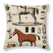 A Chromolithograph Of Horses With Antique Horseback Riding Equipments   1890  Throw Pillow