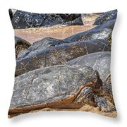A Couple Of Turtles Stopped By Throw Pillow