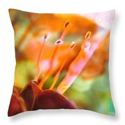 A Day Later Throw Pillow