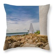A Different View Goat Island  Throw Pillow