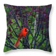 A Flash Of Red Throw Pillow