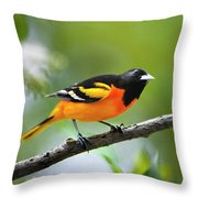 A Look To Remember Throw Pillow