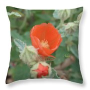 A Moment Of Motion Throw Pillow