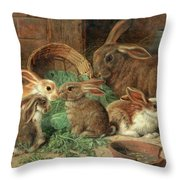 A Mother Rabbit And Her Young Throw Pillow