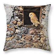 A New Home Barn Owl Throw Pillow by Alan M Hunt