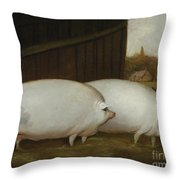 A Pair Of Pigs Throw Pillow