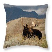 A Really Big Moose Throw Pillow