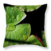 A Red Leaf Among The Water Lily Pads Throw Pillow