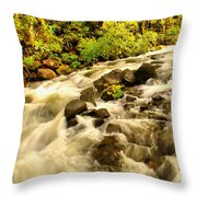 A River Turns Throw Pillow