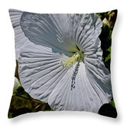 A Rose Is A Rose Is A ... Throw Pillow