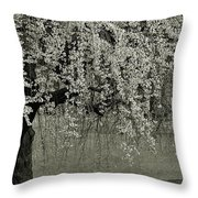 A Single Cherry Tree In Bloom Throw Pillow
