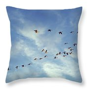 A Skein Of Canada Geese Throw Pillow
