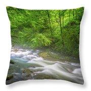 A Springtime Stream Throw Pillow