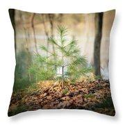 A Tiny Pine Throw Pillow