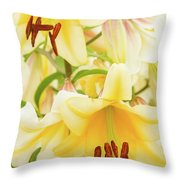A Tower Of Lilies Throw Pillow