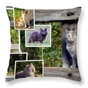 A Variety Of Cats Throw Pillow