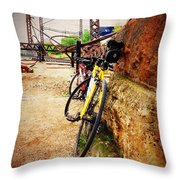 Abandoned And Beautiful Throw Pillow