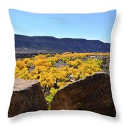 Gorgeous View Of Golden Cottonwood Trees In Canyon Throw Pillow