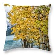 Abraham Lake Throw Pillow