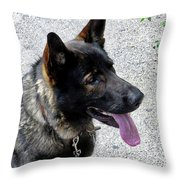 Absolute Loyalty Throw Pillow