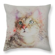 Abyssinian Cat Throw Pillow