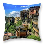 Adaption Throw Pillow