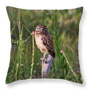 Adult Burrowing Owl Throw Pillow