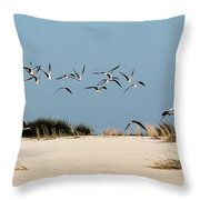African Skimmers Throw Pillow