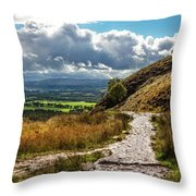 After The Rain On The Trail Throw Pillow