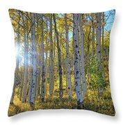 Afternoon Aspens Throw Pillow