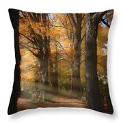 Afternoon Light In Fall Colors Of New England Throw Pillow