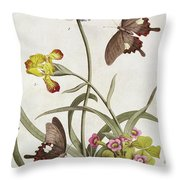 Agapanthus Africanus, Iris Variegata And A Species Of Oxalis Throw Pillow