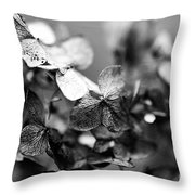 Aged Perfection Throw Pillow