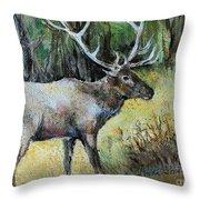 Alaska Elk Throw Pillow