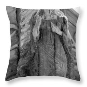 Albatross Fine Art Masthead Throw Pillow