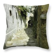 alley in Hammamet, Tunisia Throw Pillow
