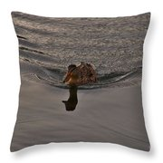 Swimming Dead Ahead Throw Pillow