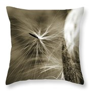 Almost Throw Pillow by Michelle Wermuth