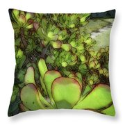 Aloe Succulent Throw Pillow