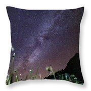 Alpine Milky Way Throw Pillow