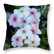 Alpine Rockjasmine Up Close Throw Pillow