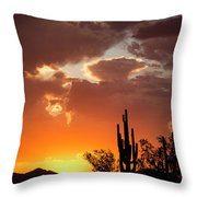 Always Look To The West Throw Pillow