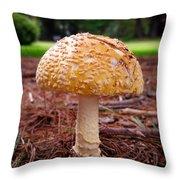 Amanita Fungus Throw Pillow